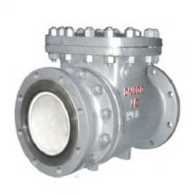 Wear-resisting ceramic check valve