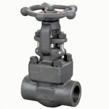 Bolt type forged steel gate valve