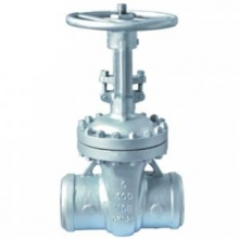 Cast steel gate valve 300Lb