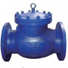 Swing type rubber disc check valve