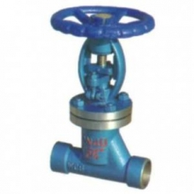 Bellows globe valve